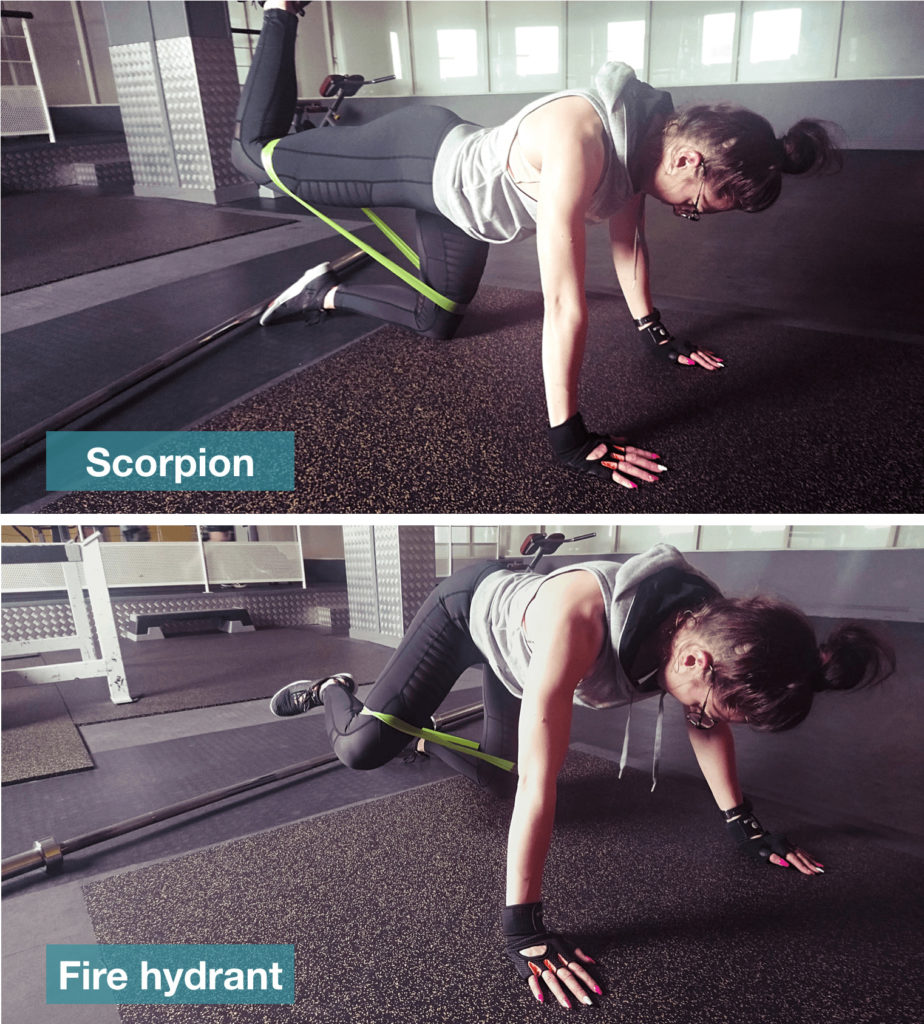 scorpion fire hydrant musculation